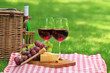 Picnic with red wine