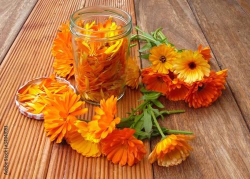 Blüten der Ringelblume - 34049183
