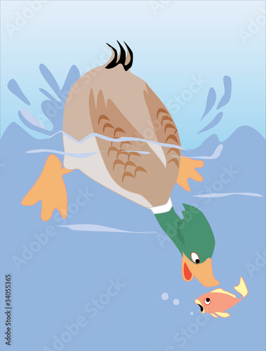 Tuinposter Rivier, meer Duck catching fish
