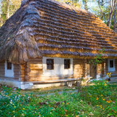 historical country wooden hut with thatched roof