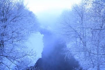 川辺の樹氷