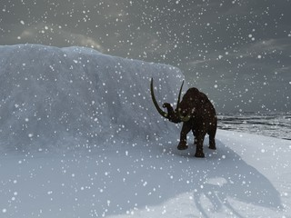 Woolly ice age mammoth in blizzard