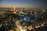 Fototapety 東京夜景