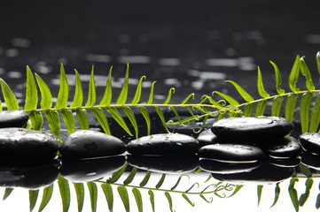 peace and tranquility, pebbles and fern leaf reflected