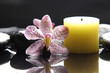 aromatherapy candle and pink orchid with zen stones- spa scene