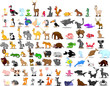 Постер, плакат: Большой набор животных