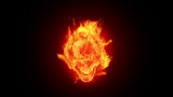Fire skull, HD loop