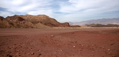 Travel in Arava desert