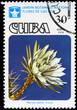CUBA - CIRCA 1978 Harrisia