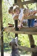 Children feeding a dog from tree house