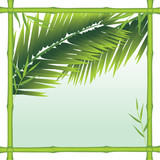 Fototapety Bamboo frame with palm branches