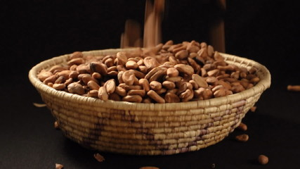 Raw cocoa beans poured into basket