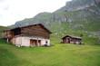 Malga Troier - Alpe di Cisles (Val Gardena)