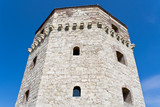 Old tower of Belgrade fortress poster