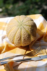 Cantaloupe with tableware