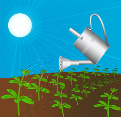 sprinkling can waters plant solar daytime