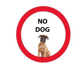 Vietato l'ingresso ai cani