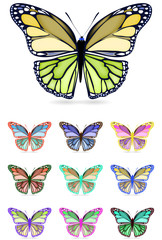 set of colorful butterfly isolated on white background