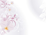 Fototapety Orchids with decorative sprigs. Background for card