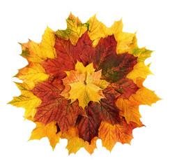 Bunte Herbstblätter als Blume geformt