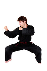 Arts martiaux: garde de combat