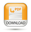 pdf icon download button