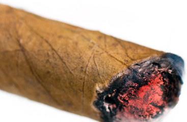 Burnt cuban cigar on a white background