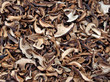 Getrocknete Maronenröhrlinge