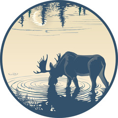 Elk in the drinking water