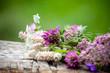 fiori di campo su tavola in legno