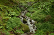 Waterfall in the Saja-Besaya National Park in Cantabria - 34266141