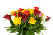 Bouquet of colorful roses over white background