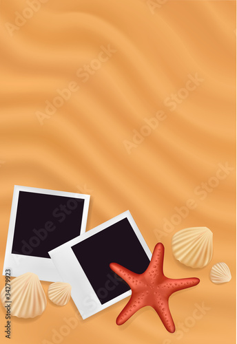 Sea shells with photos on the sand background. Vector.