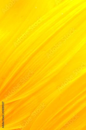 Płatki słonecznika