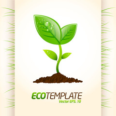 Green eco template 2