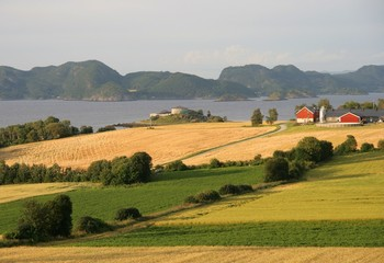 Norwegian farmland by a fjord