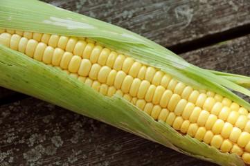 Fresh corn  on the table