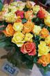 bouquet de roses colorées - rosaceae