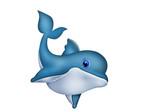 Dolphin. Delphin