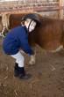 bambina prepara pony