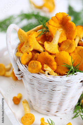 Fresh chanterelle mushrooms in basket on white wooden background