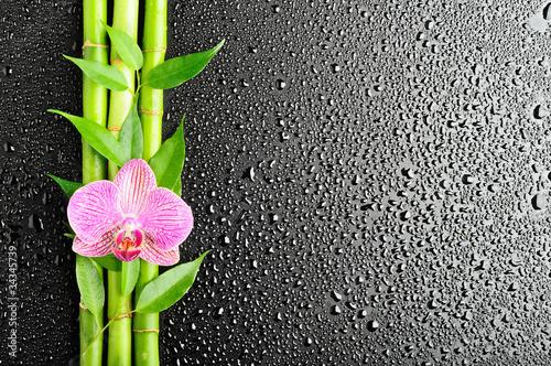 Foto op Plexiglas Orchidee spa