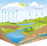 Fototapety Vector schematic representation of the water cycle in nature