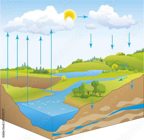 Vector schematic representation of the water cycle in nature - 34348377