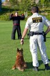 K9 Team Training