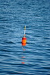 Orange and Red Lobster Bouy