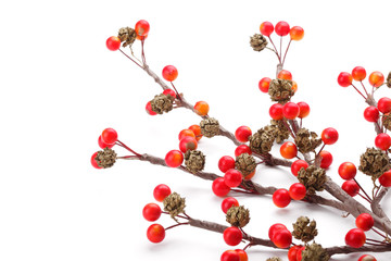 Decorative Christmas branches