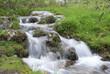 Fototapeten,natur,bach,wasser,flux