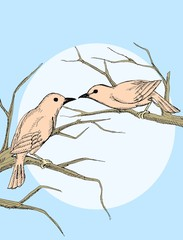 Couple bird