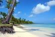 Samana dream beach